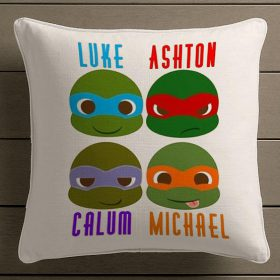 5 seconds of summer ninja turtles
